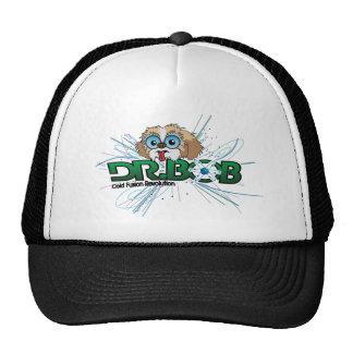 Clean Energy Branding Mesh Hat