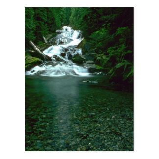 Clean Green Waters Postcards