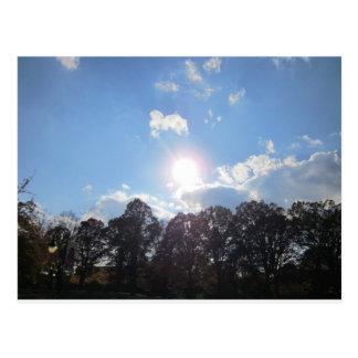 Clear Skies Postcard