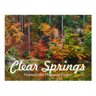 Clear Springs Recreation Area Postcard