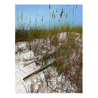 Clearwater Beach Florida art gifts