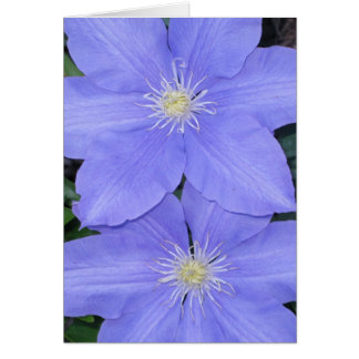 Clematis 2 Note Card