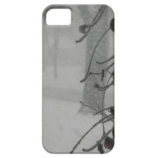 Clematis and Snow fall during a blizzard. iPhone 5 Cover
