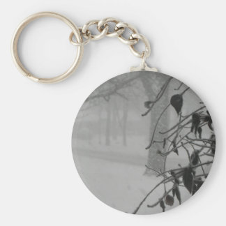 Clematis and Snow fall during a blizzard. Key Ring