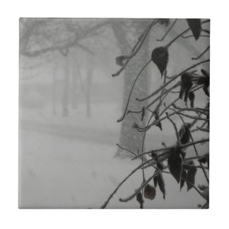 Clematis and Snow fall during a blizzard. Tile