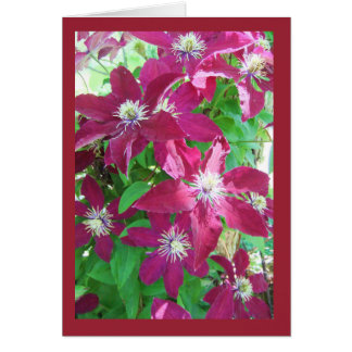 Clematis Blank Note Card