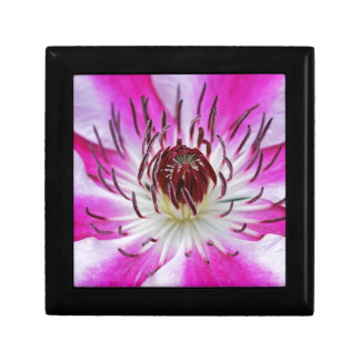 Clematis Flowers Flower Plant Garden Small Square Gift Box
