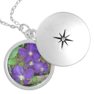 Clematis Jackmanii Superba Locket Necklace
