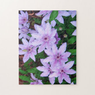 *Clematis* Jigsaw Puzzle
