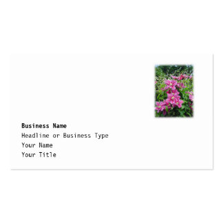 Clematis. Pretty Pink - Purple Flowers. Business Cards