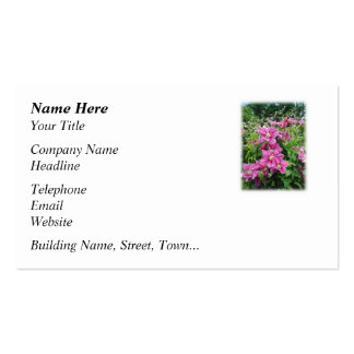 Clematis. Pretty Pink - Purple Flowers. Business Card Template