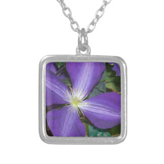 Clematis Silver Plated Necklace