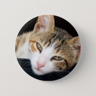 Cleo Cat Button
