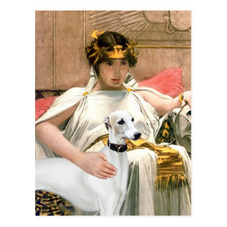 Cleopatra and White Whippet Postcard