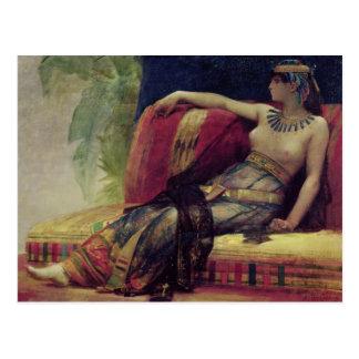 Cleopatra Postcard