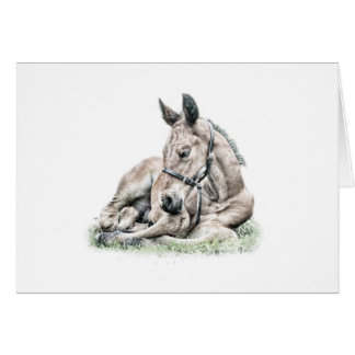 Cleveland Bay Foal Sleeping Horse Birthday card