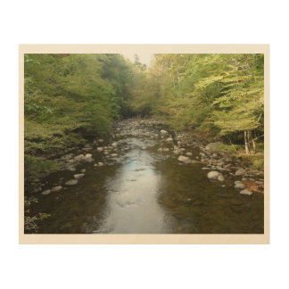 Cliff Branch Creek Wood Print