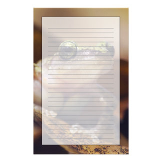 Cliff Chirping Frog, Eleutherodactylus Customized Stationery