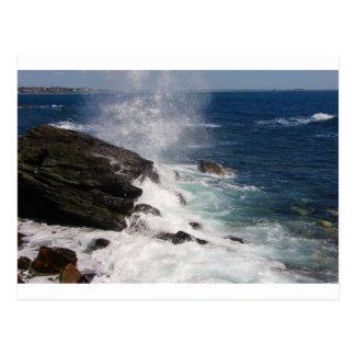 Cliff Walk at Newport, RI Postcard