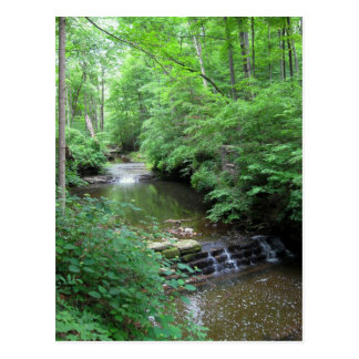 Clifty Falls Creek Postcard