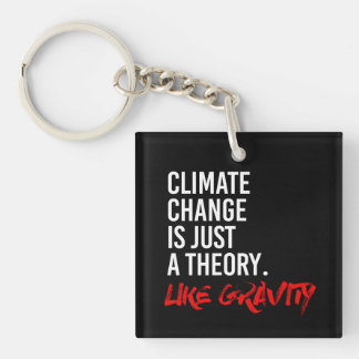CLIMATE CHANGE IS JUST A THEORY LIKE GRAVITY - - P KEY RING