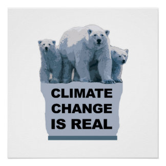 Climate Change is Real Poster