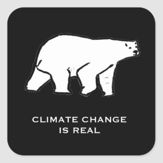 Climate Change is Real Square Sticker