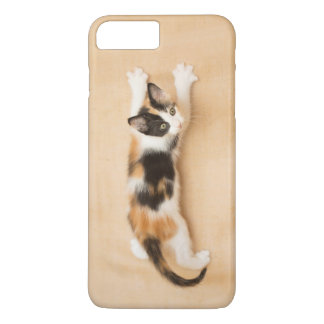 Climbing Calico Kitten Phone Case