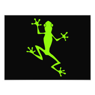 Climbing Lime Green Frog Silhouette Photo