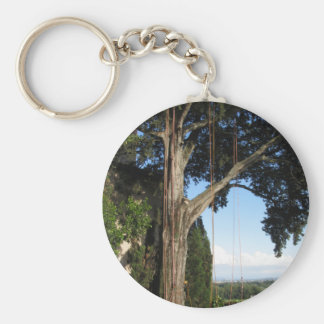 Climbing ropes hanging from a big tree key ring
