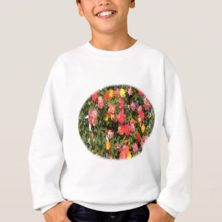Climbing-Roses in red, pink, yellow and more. Sweatshirt