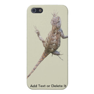 Clinging Eastern Fence Lizard iPhone 5/5S Cover