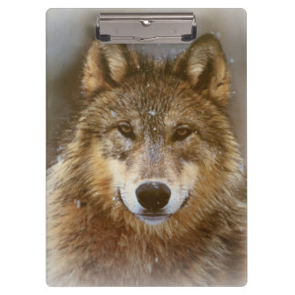 Clipboard/Wolf Clipboard