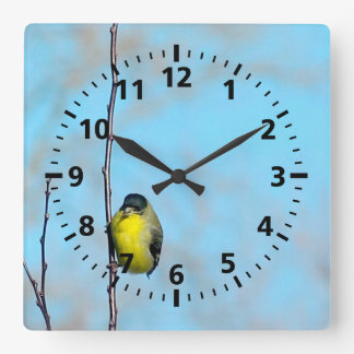 Clock - Yellow Finch