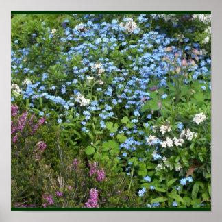 Cloisters Gardens #10 Print