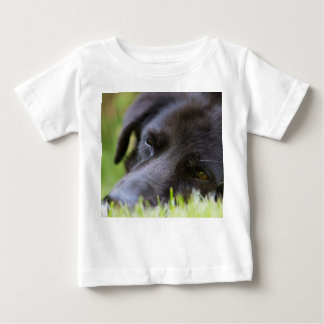 Close Up Black old dogs face with selective focus Baby T-Shirt