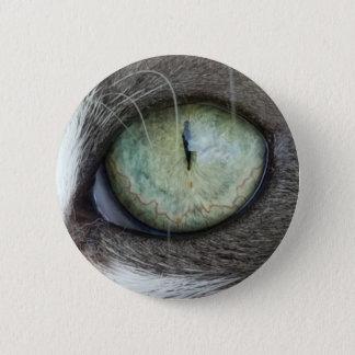 Close Up Cat's Eye 6 Cm Round Badge