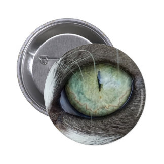 Close Up Cat's Eye 6 Cm Round Badge