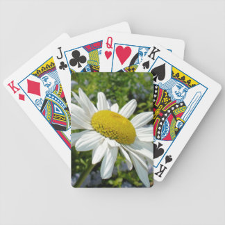 Close Up Common White Daisy With Garden Bicycle Playing Cards