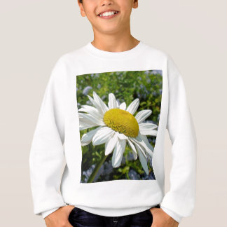 Close Up Common White Daisy With Garden Sweatshirt