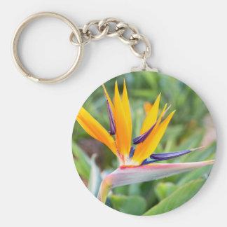 Close up Crane flower or Strelitzia reginaei Basic Round Button Key Ring
