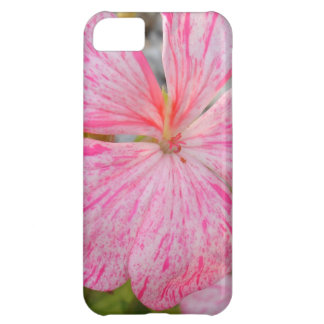 Close Up Flower of Begonia iPhone 5C Case