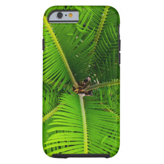 Close-up Green Palm Leaves Tough iPhone 6 Case
