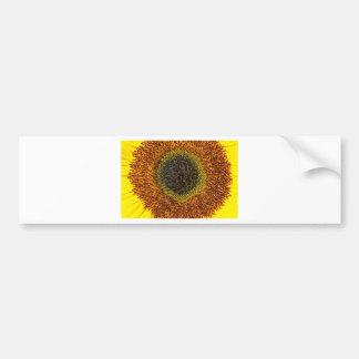 Close up heart of sunflower bumper sticker