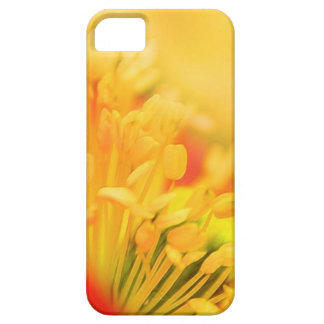 Close Up - Iceland Poppy Case For The iPhone 5