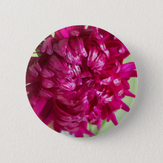 Close-up image of the flower Aster 6 Cm Round Badge