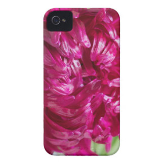 Close-up image of the flower Aster iPhone 4 Case-Mate Case