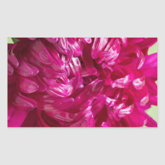 Close-up image of the flower Aster Rectangular Sticker