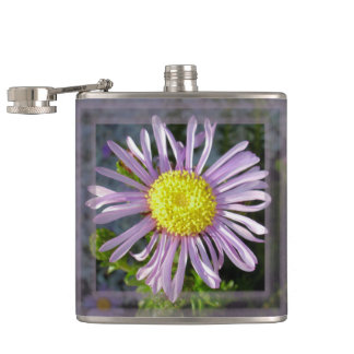 Close Up Lilac Aster With Bright Yellow Centre Hip Flask