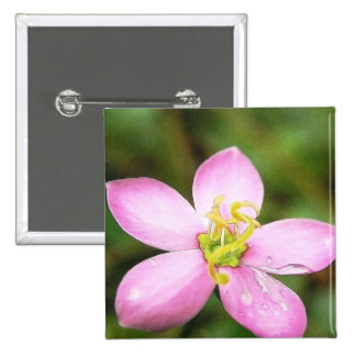 Close Up - Meadow Pink Pins